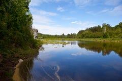 Región de Sverdlovsk Rusia Corrientes de los ciervos del parque natural Foto de archivo