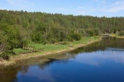 Región de Sverdlovsk Rusia Corrientes de los ciervos del parque natural Imagenes de archivo