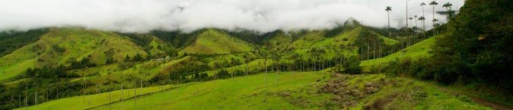 Región del café de Colombia imagen de archivo