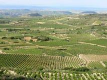 Región del vino de La Rioja en España imagen de archivo libre de regalías