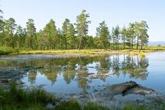 Región pantanosa Foto de archivo libre de regalías