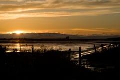 Región pantanosa en la puesta del sol Foto de archivo libre de regalías