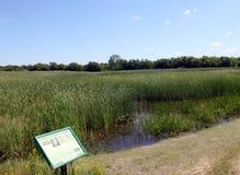 Región pantanosa y rastros, Brandon Riverbank Discovery Center imagen de archivo