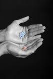Regime diário do comprimido - comprimidos na mão fêmea Fotografia de Stock