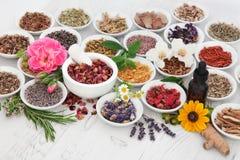 Regime natural da saúde Imagem de Stock Royalty Free