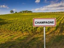 Región del vino de Champán de Francia Foto de archivo