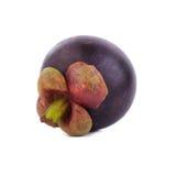 Regina dei frutti, frutta matura dei mangostani del mangostano isolata su w Fotografie Stock