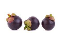 Regina dei frutti, frutta matura dei mangostani del mangostano su w Fotografia Stock Libera da Diritti