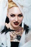Regina del ragno Immagini Stock