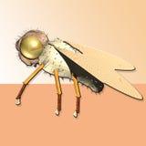 Regina dell'ape Fotografia Stock Libera da Diritti