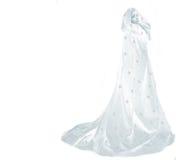 Regina della neve Fotografia Stock Libera da Diritti