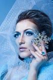 Regina e fiocco di neve della neve Immagini Stock