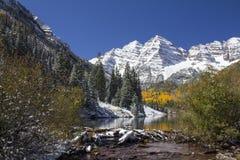 Reginette marrone rossiccio Colorado immagine stock
