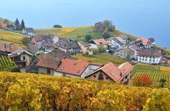 Região de Lavaux, Switzerland Fotos de Stock Royalty Free