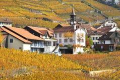 Região de Lavaux, Switzerland Imagens de Stock Royalty Free