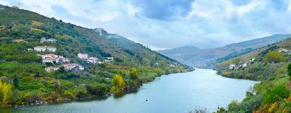 Region för Portugal Porto vinwineyards Arkivbilder