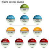 Regional Org Chart Royalty Free Stock Images