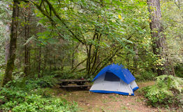 2 regionala Person Tent Wooded Campsite Oxbow parkerar Royaltyfria Bilder