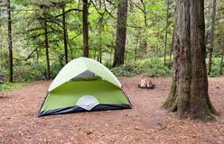 2 regionala Person Tent Wooded Campsite Oxbow parkerar Arkivfoton