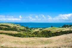 Regionala Shakespear parkerar, den Auckland regionen, Nya Zeeland Royaltyfria Foton