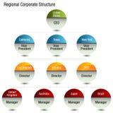 Regionales Org-Diagramm Lizenzfreie Stockbilder