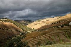 Regione del vino di Douro del negativo per la stampa di cartamoneta Immagine Stock Libera da Diritti