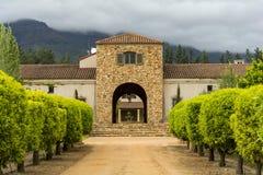 Regione del vino di Stellenbosch vicino a Cape Town, Sudafrica Immagini Stock Libere da Diritti