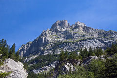 Regione di Jungfrau in estate Fotografie Stock Libere da Diritti