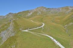 Regione di Jungfrau, Svizzera Immagine Stock Libera da Diritti