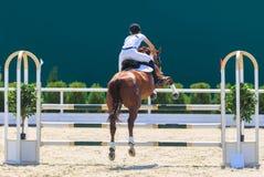 REGIONE DI TAGANRONG, ROSTOV-ON-DON, IL 6 AGOSTO 2017: Concorsi nello sport equestre, votato al giorno della liberazione del Nekl immagine stock libera da diritti