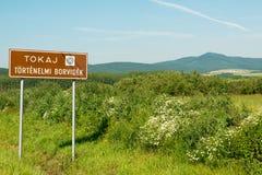 Regione di Tokaj Fotografie Stock