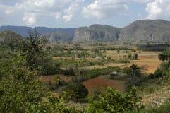 Regione di Viñales fotografie stock libere da diritti
