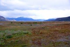 Regione paludosa, Patagonia Immagine Stock Libera da Diritti