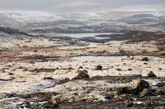 Regione polare Immagini Stock Libere da Diritti