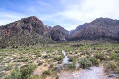 Regione selvaggia del deserto e canyon della montagna Immagini Stock Libere da Diritti
