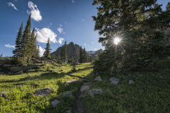 Regione selvaggia del nido di Eagles, Colorado Fotografia Stock Libera da Diritti
