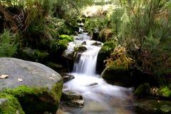 Regione selvaggia del Portogallo Fotografia Stock