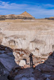 Regione selvaggia di Bisti/De-Na-Zin Fotografia Stock
