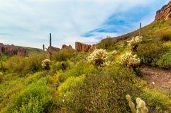 Regione selvaggia di montagna di superstizione della traccia del canyon di Boulder in Arizona Immagine Stock Libera da Diritti