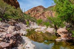 Regione selvaggia di montagna di superstizione della traccia del canyon di Boulder in Arizona Fotografia Stock