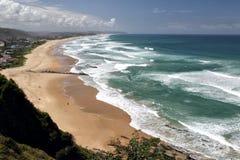 Regione selvaggia, Sudafrica Immagini Stock