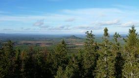 regione selvaggia svedese Fotografia Stock