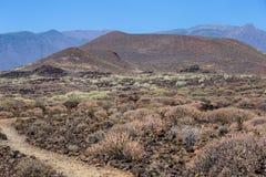 Regione vulcanica della depressione del percorso dell'isola di Tenerife, canarino, Spagna fotografia stock libera da diritti