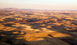 Regione Washington Farmland Rolling Hills Agriculture orientale di Palouse immagini stock