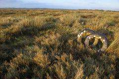 Regioni paludose a bassa marea, Huelva, Spagna del fiume di Piedras Immagini Stock
