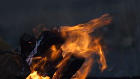 Registra o burning de madeira no fogo exterior do acampamento vídeos de arquivo