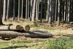 Registración de madera Foto de archivo libre de regalías