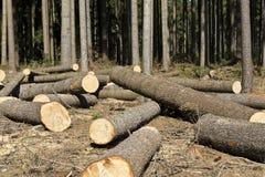 Registración de madera Foto de archivo