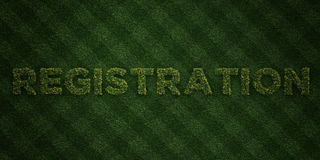 REGISTRATION - fresh Grass letters with flowers and dandelions - 3D rendered royalty free stock image Stock Images
