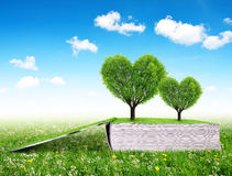 Registre com as árvores na forma do coração Imagem de Stock Royalty Free